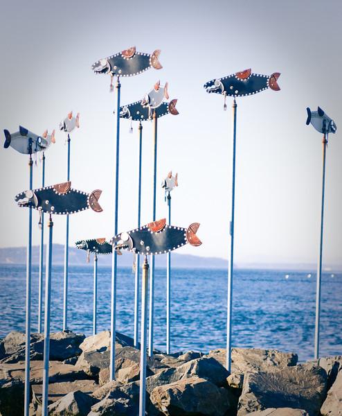 Salmon sculpture at Edmonds Marina, Edmonds, Washington.