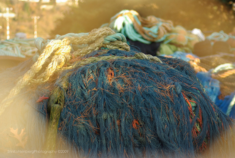 """Fishing nets at the port of Seattle, Pier 90/91, Smith Cove, Seattle waterfront.<br /> <a href=""""http://www.portseattle.org/seaport/commercialmoorage/dailymoorage/pier9091.shtml"""">http://www.portseattle.org/seaport/commercialmoorage/dailymoorage/pier9091.shtml</a>"""
