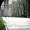 Red Square Towers. University of Washington, Seattle, Washington.