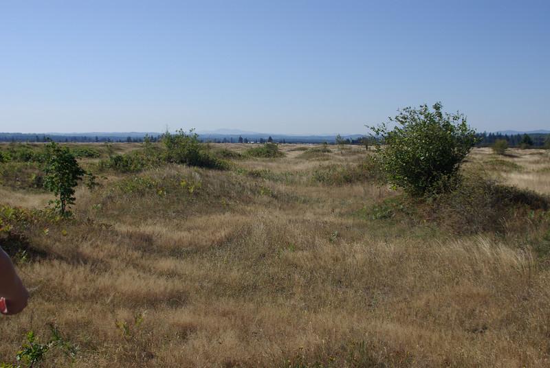 Mima Mounds, Washington State.