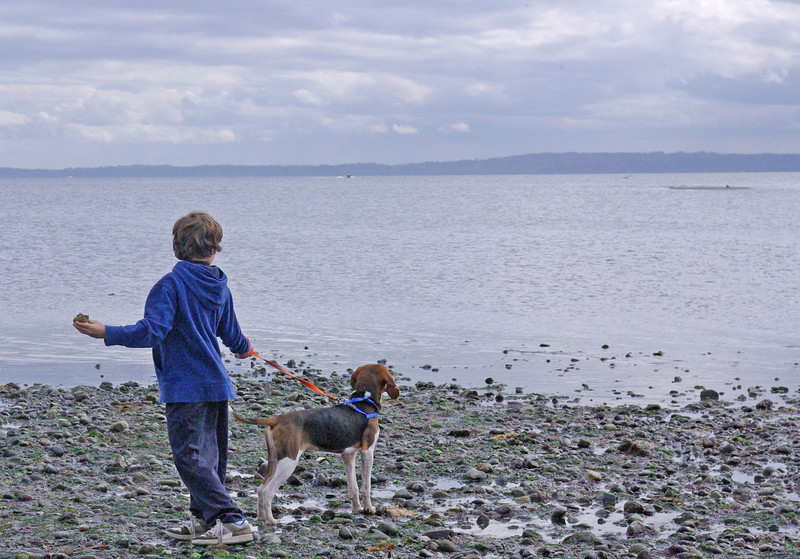 Edmonds beach dog park, May 2008.  Nephew Keegan and Timber.  Timber is a Walker's Treeing Coon Hound.
