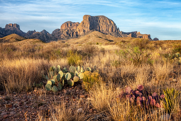 Morning in Big Bend