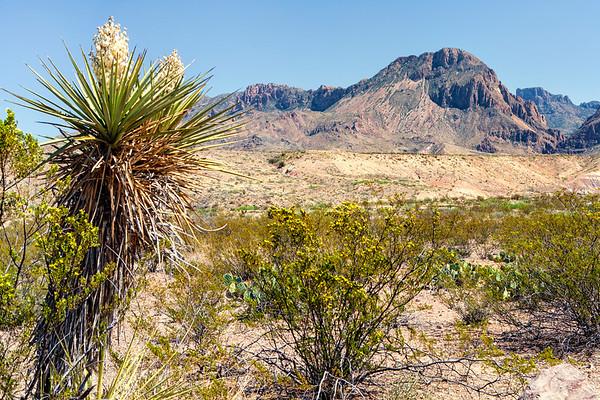 Chisos Peak
