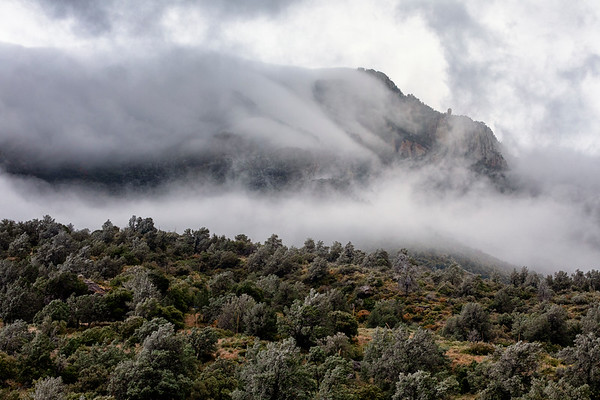 Cloud Avalanche