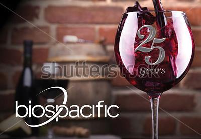 Poster-landscape_0004_wine-brick-