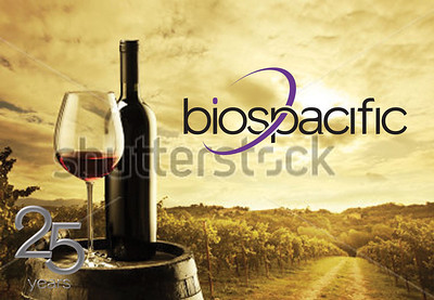 Poster-landscape_0001_wine-valley-2