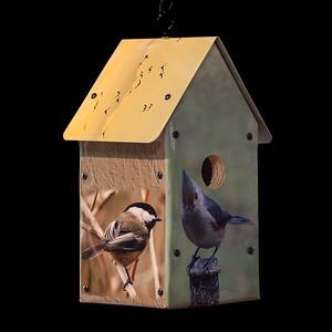 Backyard Birds Birdhouse