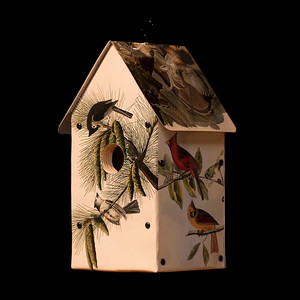 John James Audubon Birdhouse
