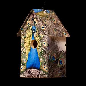 Peacocks Birdhouse