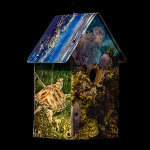 Coral Reef Birdhouse
