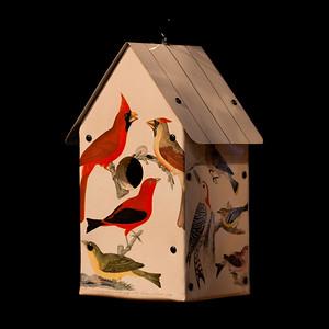 Alexander Wilson Birdhouse