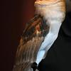 birding-festival-2012-102