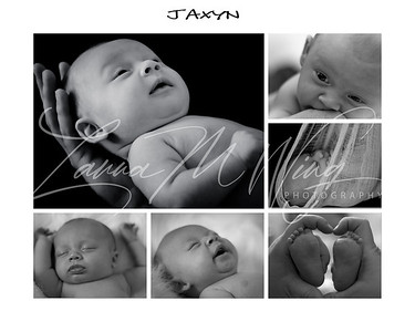 Jaxyn B&W Collage