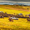 Bison-Roundup-Pano-Flag