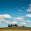 BisonRoundup_Sep262013_0582-Big Sky Scenic