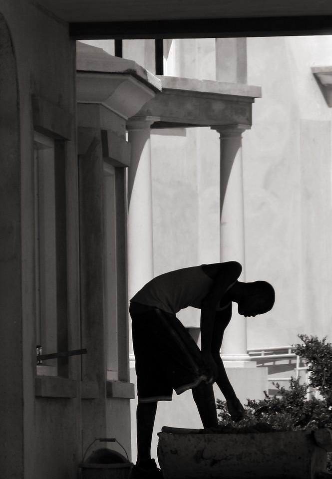 Worker, Bermuda