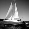 Adam Mayotte Sailing the Sonador
