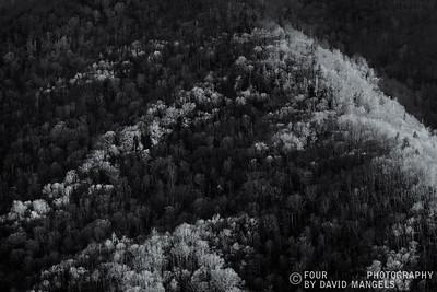 Mountain Negative