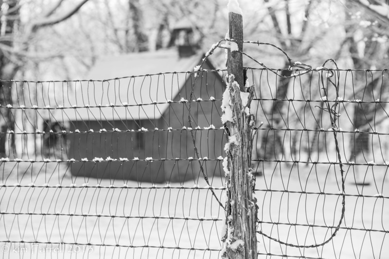 Snow on the wire.
