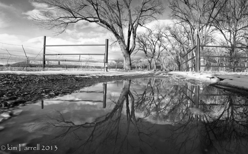 Mirrored on the Ranch road.