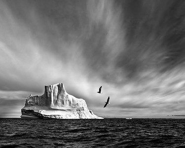Iceberg in Black and White