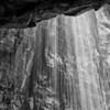 Veiled.  Arroyo Seco, NM.