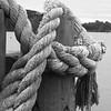 10-4-2020: Rope on the docks, Edenton