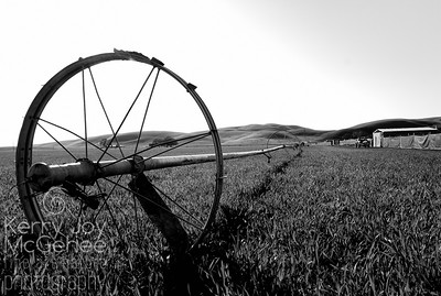 Irrigation Wheel at Stanley Ranch