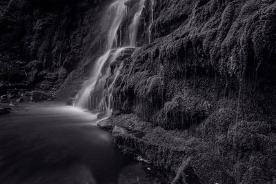 Middle Black Clough in Birchen Wood near the A628 at Woodhead Reservoir.