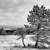Vinterlandskap Frosktjønna Bodø