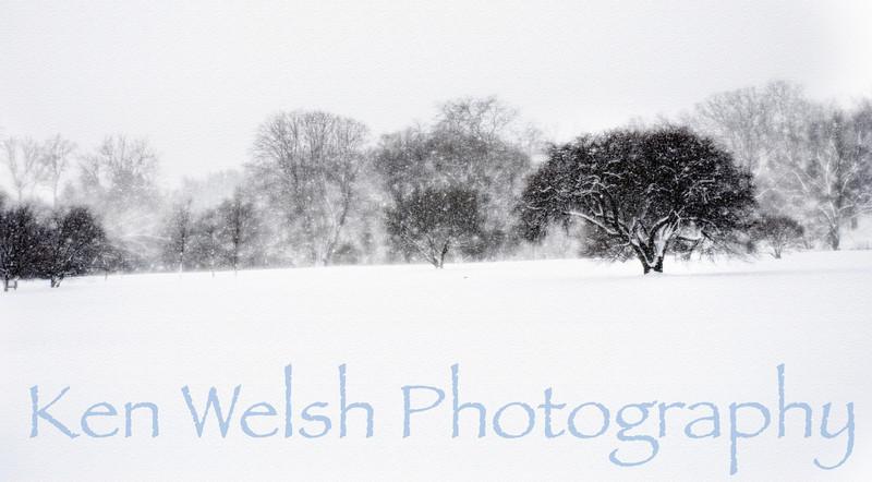 © Ken Welsh Copyright