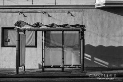 Bus Stop, San Francisco