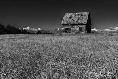 Barn and Field, Mendocino