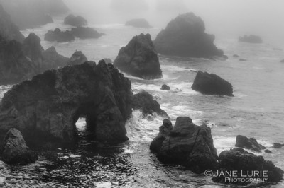 Rocks and Fog, Bodega Bay