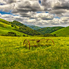 OldSanJuanRd-Rusted_Equipment_Medium_Apr262014_0069