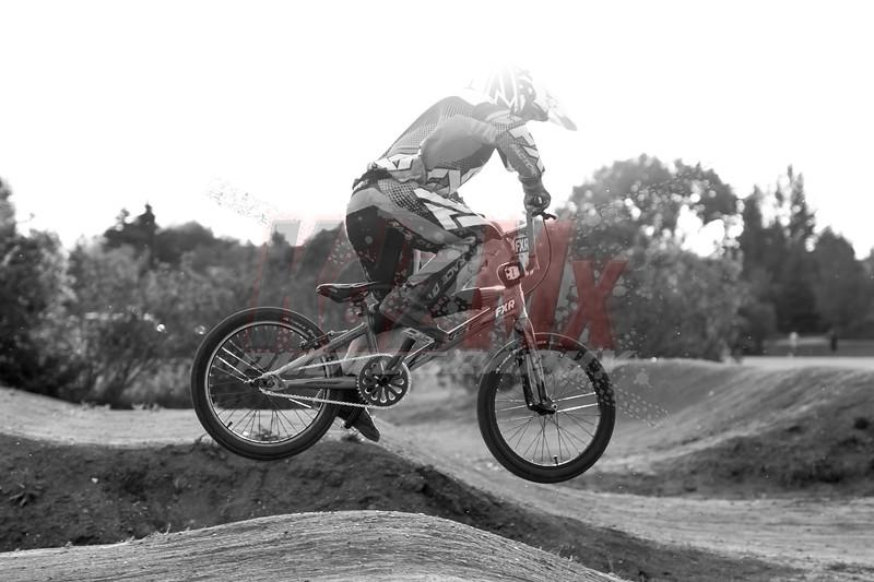 Globe BMX (16 of 17)