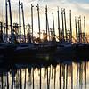 Shrimp Boat Fleet at Sunset on Christmas Day
