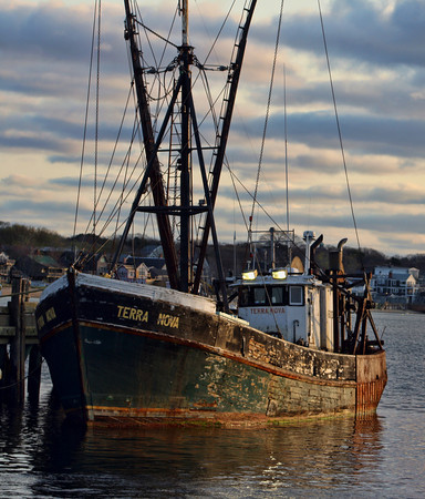 Terra Nova, <br /> Fishing Boat at Provincetown
