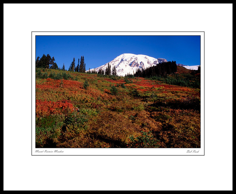 3471 Mount Rainier Meadow