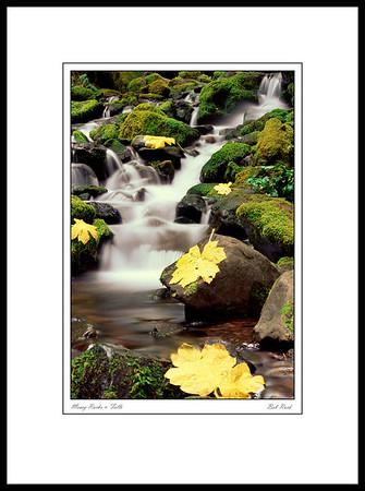 2441 Mossy Rocks & Falls