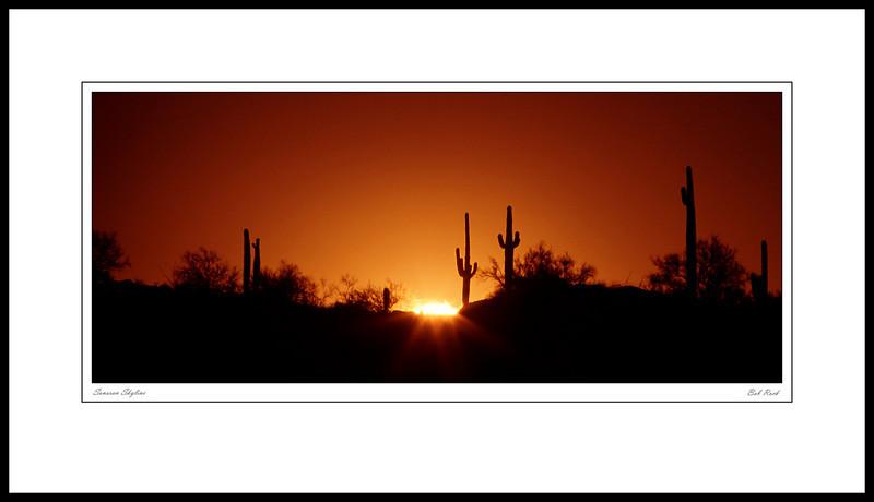 2604 Sonoran Skyline