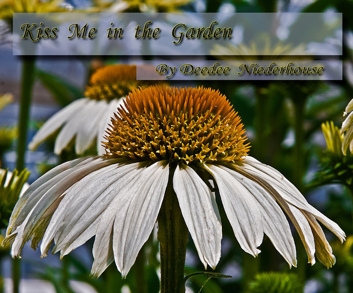 "In ""Kiss Me in the Garden"" you will enjoy a stroll through beautiful garden scenes with a collection of everything garden including structures, fountains, flowers, and creatures.   <br /> <br /> This book is in the early stages. Please check back now & then for updates on the progress."