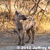 2012-Botswana-0730-3777