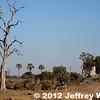 2012-Botswana-0720-9158