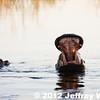 2012-Botswana-0723-0274