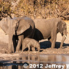 2012-Botswana-0724-1205