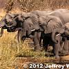 2012-Botswana-0724-1149