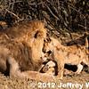 2012-Botswana-0724-0434