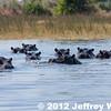 2012-Botswana-0721-9447