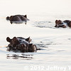 2012-Botswana-0723-0281